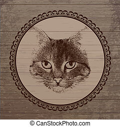 Cat portrait on wooden background