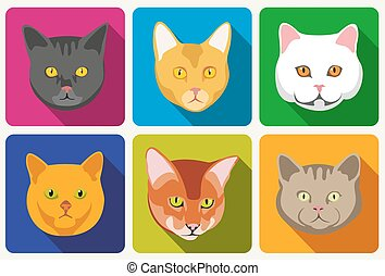 Cat portraits vector collection