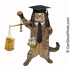 Cat professor holds a scale of justice