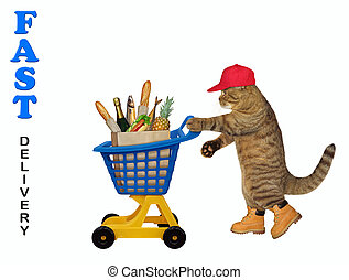Cat pushing plastic trolley of food 2