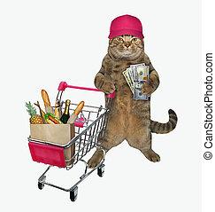 Cat pushing shopping cart 2