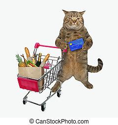 Cat pushing shopping cart