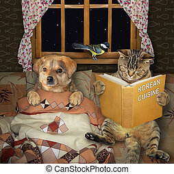 Cat reads bedtime story to dog 2