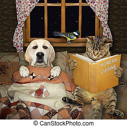 Cat reads fairy tales to dog 2