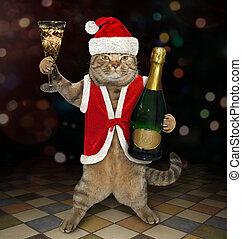 Cat Santa holds a bottle of wine 2