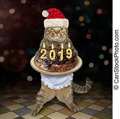 Cat Santa holds the Christmas cake 2