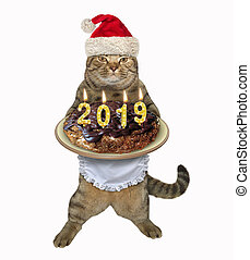 Cat Santa holds the Christmas cake