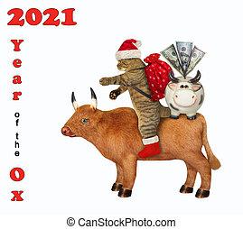 Cat Santa rides ox 2