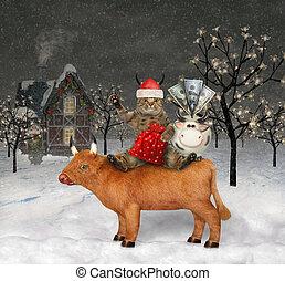 Cat Santa sits on ox 2