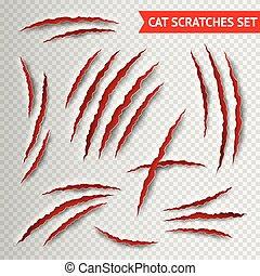 Cat scratches transparent