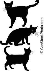 Cat set 1