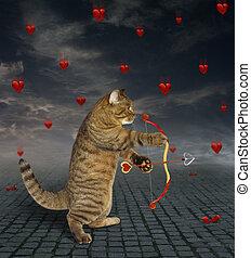Cat shoots with an arrow 2