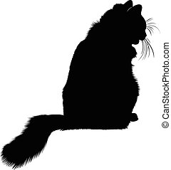 cat., silhouette., chat noir, ani