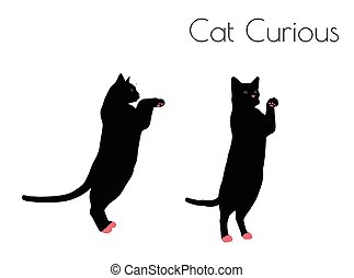 cat silhouette in Curious Pose