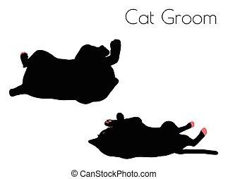 cat silhouette in Groom Pose