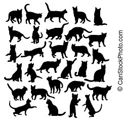 Cat Silhouettes