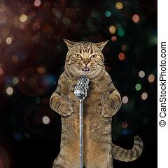 Cat singer 1