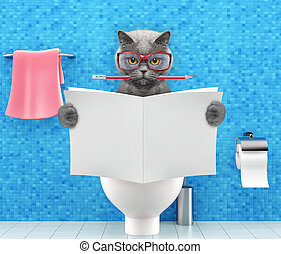 Cat sitting on a toilet seat with digestion problems or constipation reading magazine or newspaper and writing