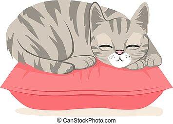 Cat Sleeping On Pillow