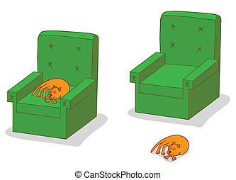 cat sleeping on sofa