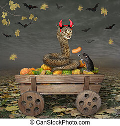 Cat snake and rat on wooden cart