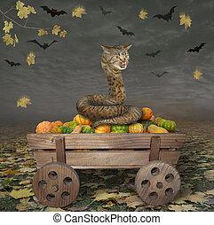 Cat snake on wooden cart