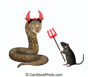 Cat snake with red horns 3