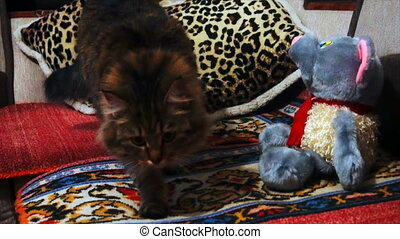 cat sniffing a stuffed toy.