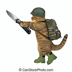 Cat soldier holds a jackknife