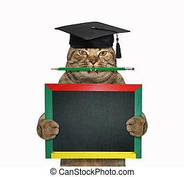 Cat teacher with pencil and blackboard 2