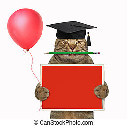 Cat teacher with pencil and red board 2
