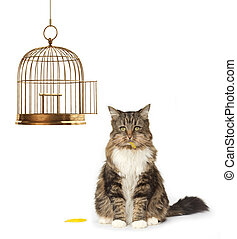 Cat that Ate the Canary - Cat with a full mouth sitting next...