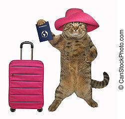Cat tourist holds a passport