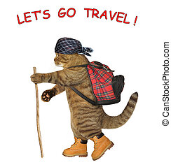 Cat tourist with a rucksack 2