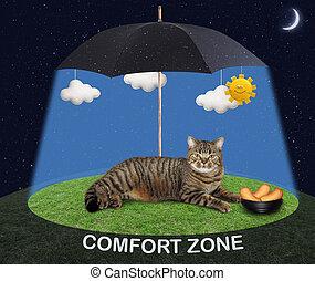 Cat under a black umbrella