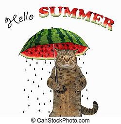 Cat under a watermelon umbrella