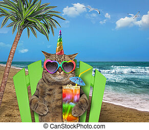 Cat unicorn resting on the beach