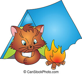 Cat vector - Cat and Camp isolated on white background. ...