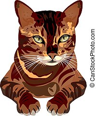 cat vector illustration on a white background