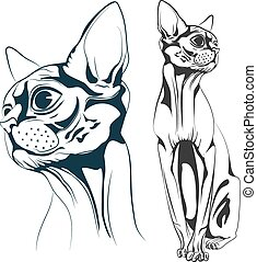 Cat vector - Monochrome bald cat, a set of two objects the ...