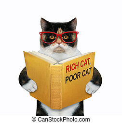 Cat wants to be rich 2