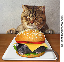 Cat wants to eat mouse burger