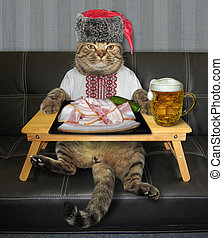 Cat wants to eat salo with beer 2