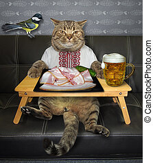 Cat wants to eat salo with beer