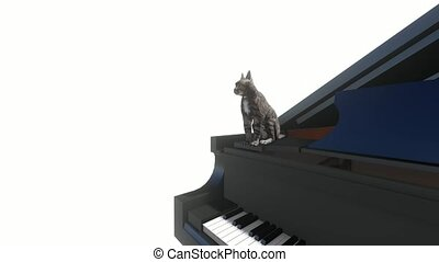 Cat washes sitting on the piano