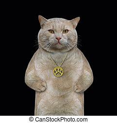 Cat wears a gold locket - The beige cat wears a gold locket...