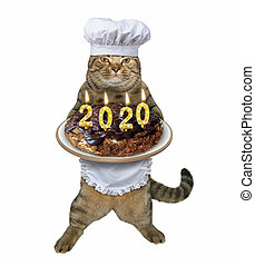 Cat with 2020 Christmas cake 2