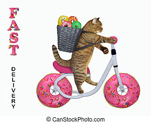 Cat with a basket rides the bicycle 2