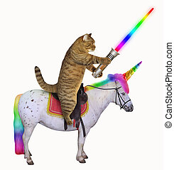 Cat with a glowing sword rides the unicorn