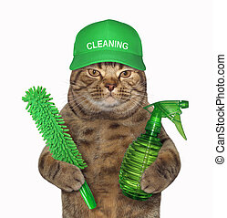 Cat with a green spray bottle